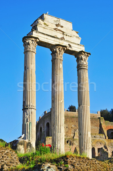 Stock photo: Roman Forum in Rome, Italy