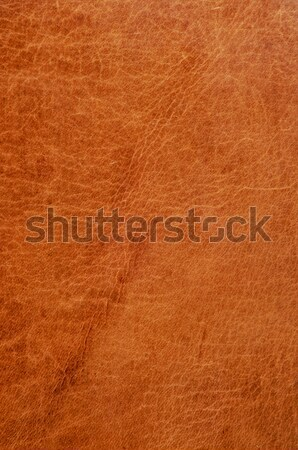 leather texture Stock photo © nito