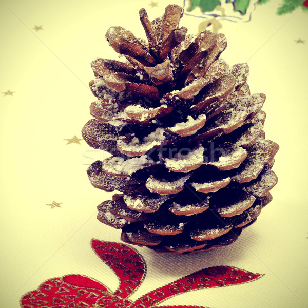snowy pine cone Stock photo © nito
