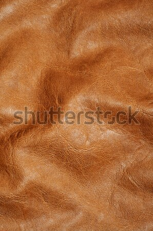 brown leather Stock photo © nito