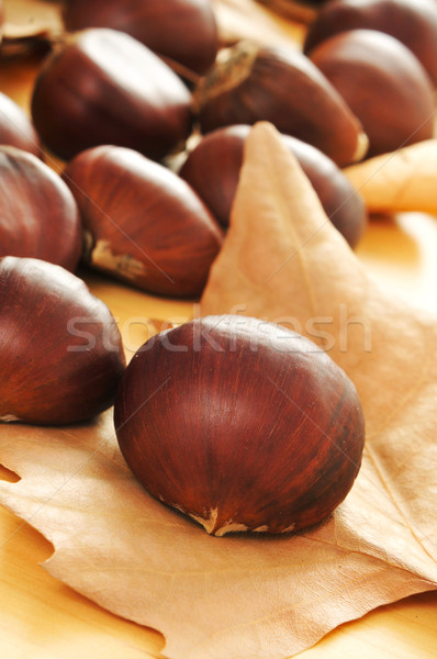 chestnuts Stock photo © nito