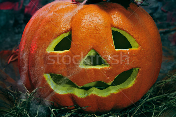 Halloween jack-o-lantern Stock photo © nito