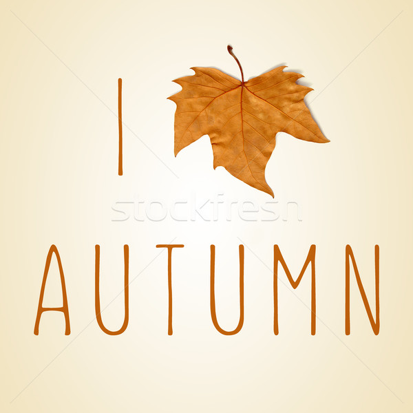 text I love autumn with a dry leaf instead of a heart Stock photo © nito
