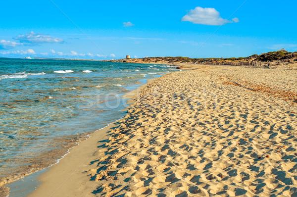 パノラマ 表示 ビーチ 島 スペイン 海 ストックフォト © nito