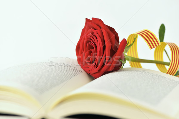 Rote Rose Flagge offenes Buch Name Stock foto © nito