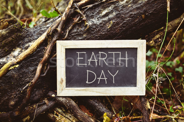 Stock photo: chalkboard with the text earth day in a tree