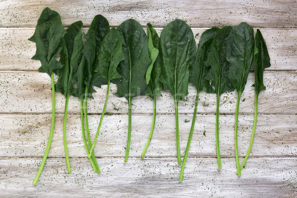 raw spinach on a rustic white table Stock photo © nito