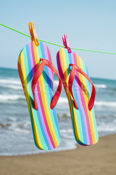 rainbow flip-flops hanging on a clothes line Stock photo © nito