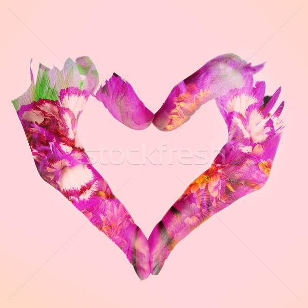 Dupla kitettség nő kezek szív virágok Stock fotó © nito