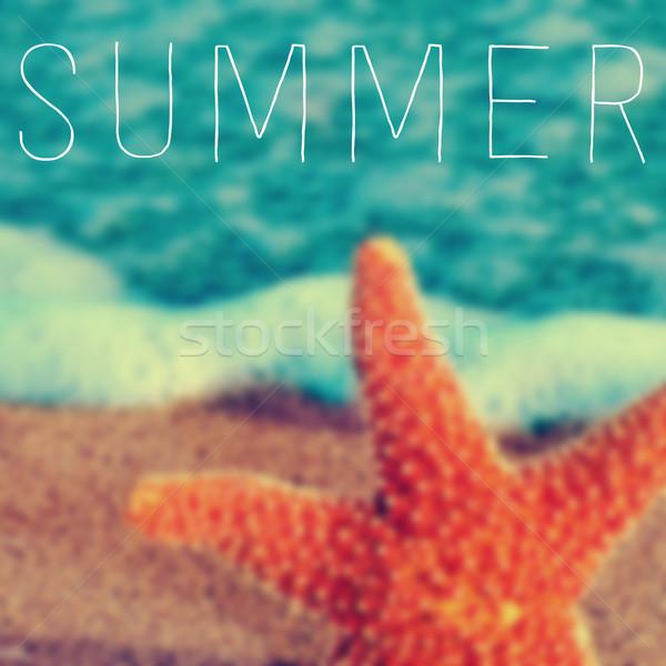 Szó nyár tengeri csillag írott elmosódott kép Stock fotó © nito