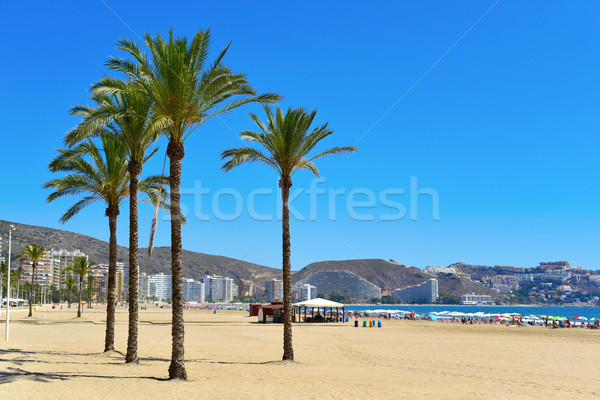 San Antonio Beach in Cullera, Spain Stock photo © nito