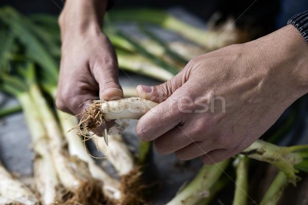 Uomo dolce cipolle tipico Spagna Foto d'archivio © nito