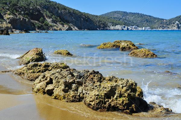 Aigues Blanques beach in Ibiza Island, Spain Stock photo © nito
