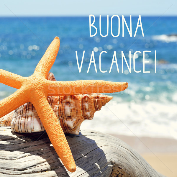 text buona vacance, happy vacation in italian Stock photo © nito