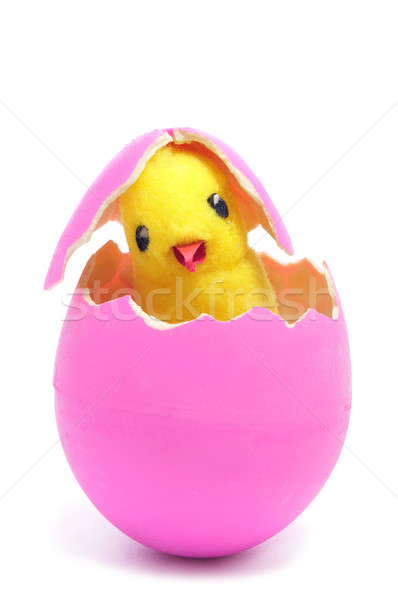 teddy chick and hatched pink easter egg  Stock photo © nito