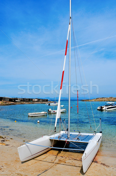 Cala Sa Roqueta cove in Formentera, Balearic Islands, Spain Stock photo © nito