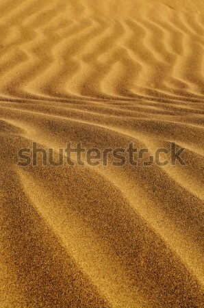 砂 クローズアップ 波状の パターン ビーチ 太陽 ストックフォト © nito