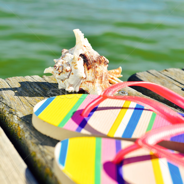 flip-flops and conch on a wooden pier Stock photo © nito
