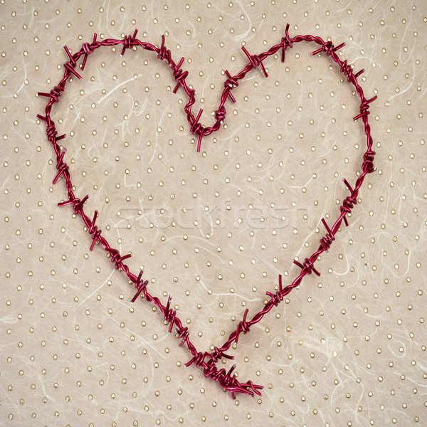 heart-shaped barbed wire Stock photo © nito