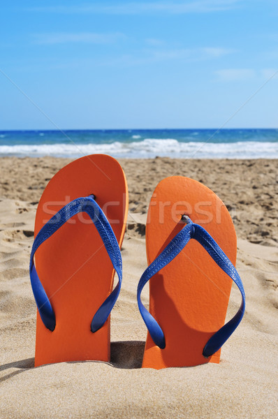 flip-flops on the sand of a beach Stock photo © nito