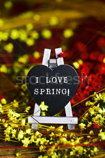 flowers and black heart with the text I love spring Stock photo © nito