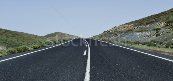 lonely road in a rural landscape Stock photo © nito