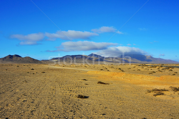 Jandia Natural Park in Fuerteventura, Canary Islands, Spain Stock photo © nito
