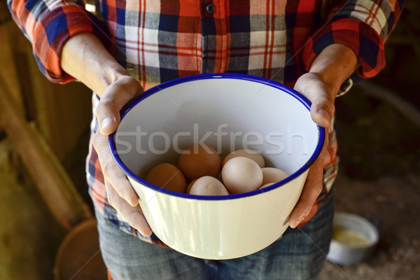 farmer man with chicken eggs Stock photo © nito