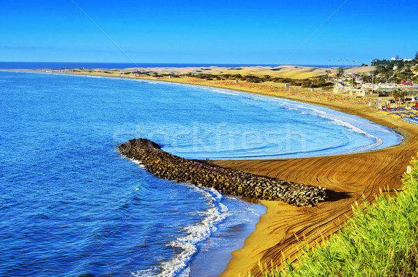 Playa del Ingles beach and Maspalomas Dunes, Gran Canaria, Spain Stock photo © nito