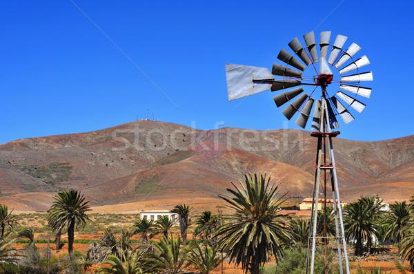 Paisagem canárias Espanha velho palma viajar Foto stock © nito