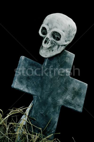 Halloween crânio grave secar grama preto Foto stock © nito