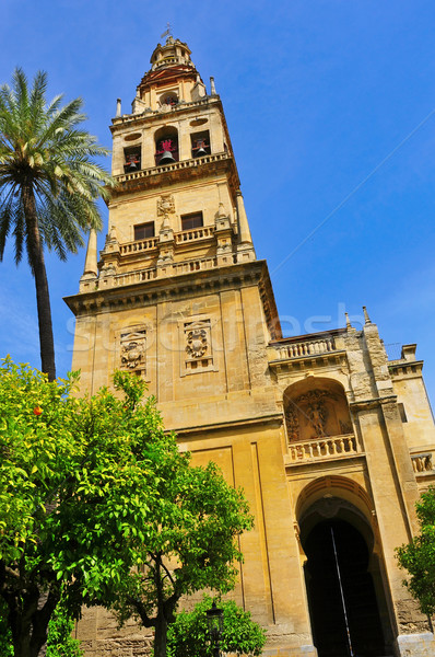 Cathedral-Mosque of Cordoba, Spain Stock photo © nito