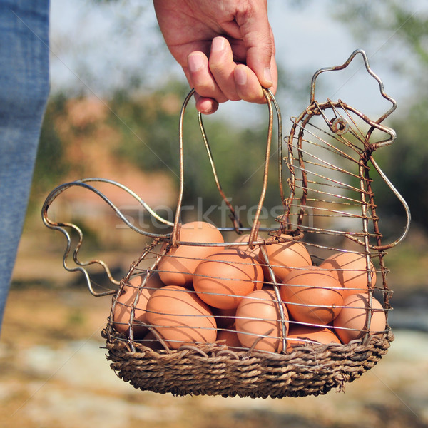 brown eggs in a hen-shaped basket Stock photo © nito