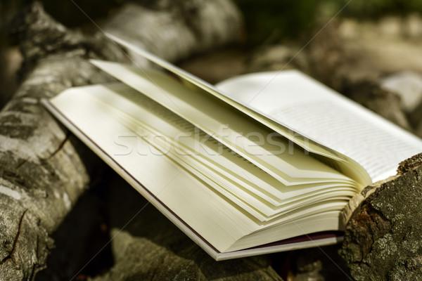 book in a rustic scenery Stock photo © nito