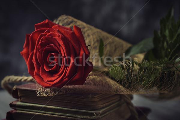 Czerwona róża starych książek rustykalny powierzchnia Zdjęcia stock © nito