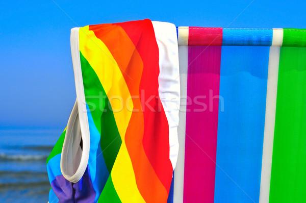 ゲイ ビーチ 水着 虹 フラグ デッキ ストックフォト © nito