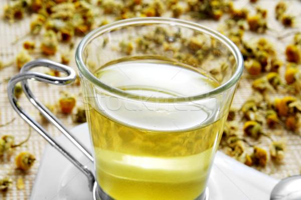 chamomile tea Stock photo © nito