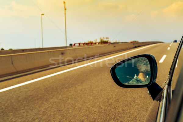 young man driving a car reflected in the wing mirror Stock photo © nito
