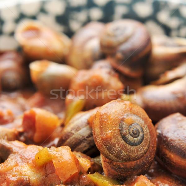Spanyol főtt mártás közelkép edény étel Stock fotó © nito