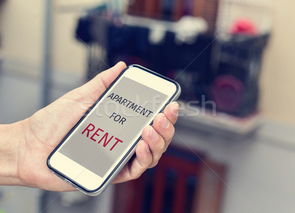 text apartment for rent in a smartphone Stock photo © nito