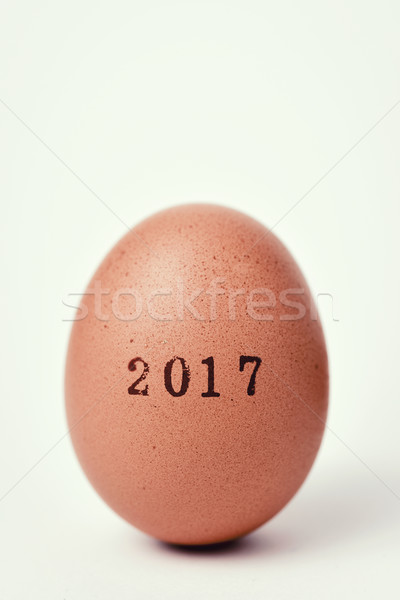 egg with the number 2017, as the new year Stock photo © nito