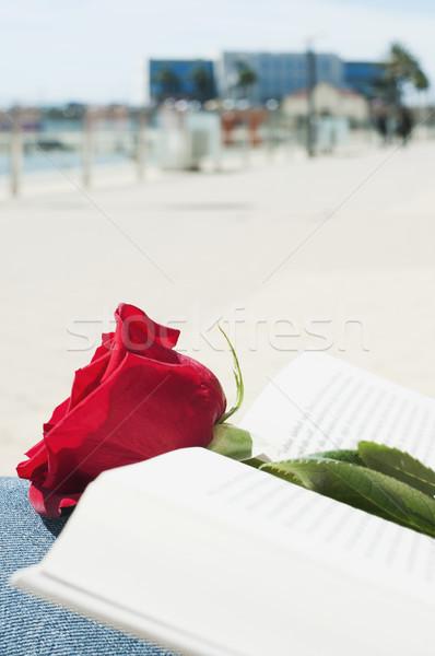 Stok fotoğraf: Kırmızı · gül · kitap · aziz · gün · açık · kitap