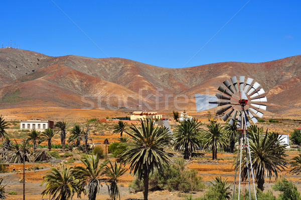 landscape of Antigua, Fuerteventura, Canary Islands, Spain Stock photo © nito