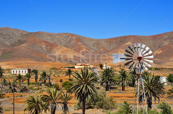 Paisagem canárias Espanha céu árvores montanhas Foto stock © nito