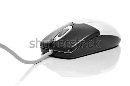 computer mouse Stock photo © nito
