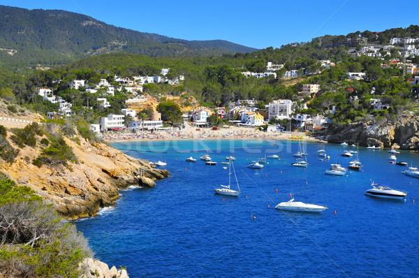 Cala Vedella beach in Sant Josep de Sa Talaia, in Ibiza Island,  Stock photo © nito