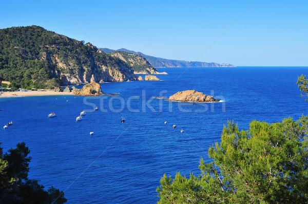 coast of Tossa de Mar, in the Costa Brava, Spain Stock photo © nito