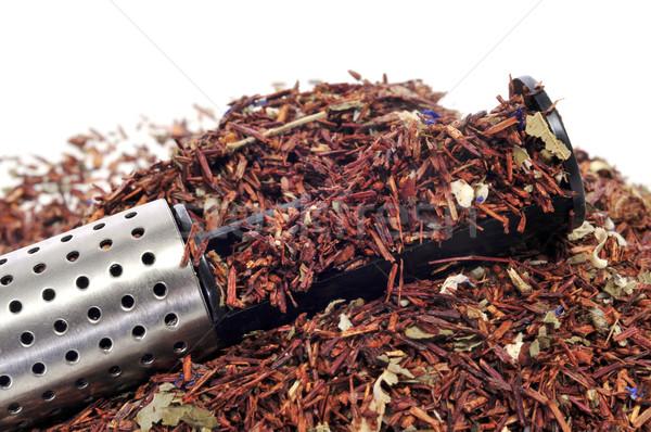 rooibos tea Stock photo © nito