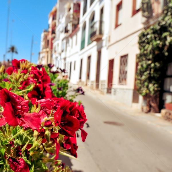 mediterranean village full of sunlight Stock photo © nito