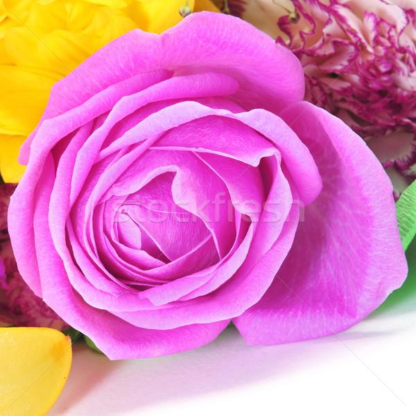 букет роз любви природы лист Сток-фото © nito